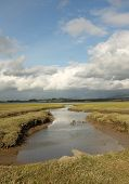 pic of marshlands  - A stream extends across the marshland of Foryd Bay Caernarfon Gwynedd Wales UK - JPG
