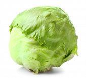 picture of iceberg lettuce  - Green Iceberg lettuce on white background - JPG