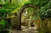 Iron Gate On Jungle Path