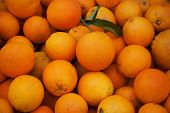 Endless oranges in a market