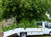 Nottinghamshire County Council truck collects tree prunings
