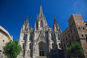 Cathedral (of Barcelona)