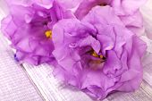 beautiful artificial eustomas on purple wooden background, close up