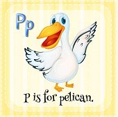 A letter P which stands for pelican