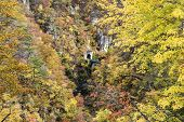 Autumn Colors Of Naruko-gorge In Japan