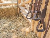 Riding Horse Equipment