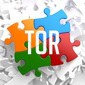TOR on Variegated Puzzle.