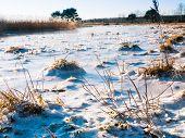 Beautiful View Of Winter Frozen Desert Dunes