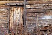 stock photo of vegetation  - Old wooden building in close up - JPG