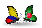 Two Butterflies With Flags On Wings As Symbol Of Relations Columbia And Bangladesh