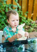 Boy Eats A White Chocolate Bunny