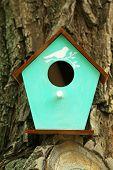 foto of nesting box  - Decorative nesting box on branch - JPG