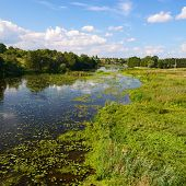 pic of marsh grass  - Rural landscape with river and water lilies and lots of shore grass - JPG