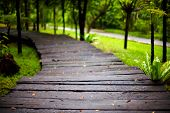 image of wet feet  - wet hiking path in tropical city park - JPG