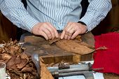 pic of tobacco leaf  - Man processing the tobacco leaves and making cigars with simple tools