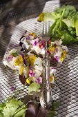 pic of edible  - Presentation of goat cheese rolls with edible flowers - JPG