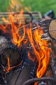 pic of firewood  - burning firewood in nature - JPG