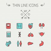 stock photo of internal organs  - Medicine thin line icon set for web and mobile - JPG