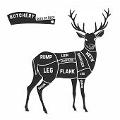 stock photo of deer rack  - Deer meat cuts with elements and names - JPG