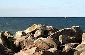 Lake Erie Landscape
