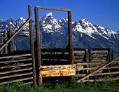 Tetons&Corral#Two