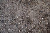 ������, ������: Crack asphalt background