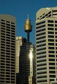 Sydney Landmark poster
