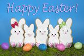 ������, ������: Easter Bunny Cookies decorated sitting in grass with blue background
