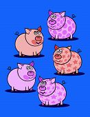 Pink Piggy Against Blue