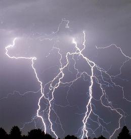 stock photo of lightning bolt  - a series of lightning bolts striking a grove of trees - JPG