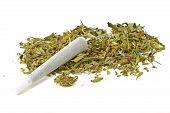Marihuana joint with marihuana