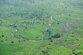 Aerial of savannah type vegetation in Africa, with a river, shot over South Sudan in the rainy seaso