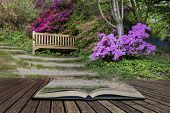 Beautiful Vibrant Landscape Image Of Footpath Border By Azalea Flowers In Spring In England Concept poster