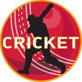 Cricket Player Batsman Sports Ball