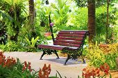 Chair in garden, surrounding by plants and flowers