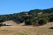 Hillside Farmhouse.  Wine Country.  Sonoma County, Ca