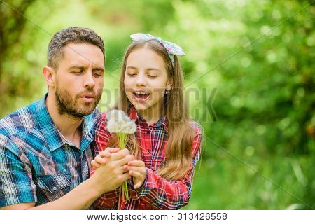 poster of Father And Little Girl Enjoy Summertime. Dad And Daughter Collecting Dandelion Flowers. Keep Allergi