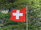 National Flag Of The Swiss Confederation (flag Of Switzerland - National Flag Of Switzerland)- Natio poster