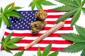 Cannabis leaves, dry nugs and rolled joint over the american flag - veteran theme medical marijuana  poster
