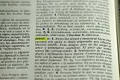 Picture of  Spanish dictionary word for love
