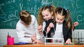 Happy Children. Chemistry Lesson. Little Kids Learning Chemistry. Students Doing Biology Experiments poster