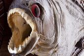 picture of piranha  - Piranha fish close up with wide mouth and sharp teeth - JPG