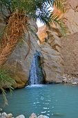 stock photo of tozeur  - Natural waterfall of Oasis of  Chebika  - JPG