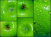 Droplets On Green Apple