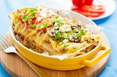 image of lasagna  - Italian lasagna with vegetables - JPG