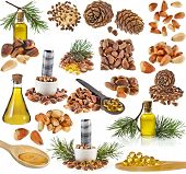 cedar pine cones , nuts , oil glass bottle , isolated on white background