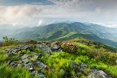 Blue Ridge Mountain Landscape