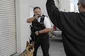 Police officer with dog aiming gun at thief