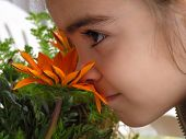 Girl Smelling Flower