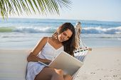 Pretty brunette sitting on hammock with laptop on the beach